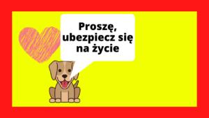 Ubezpieczenie dla psa online rozszerz o ubezpieczenie na życie