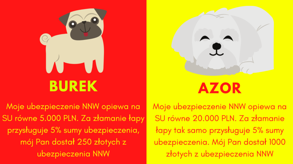Ubezpieczenie psa zapewni wyższe świadczenia wraz z wyższą sumą ubezpieczenia NNW